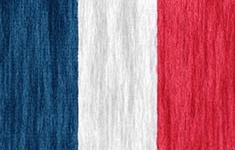 flag Martinique