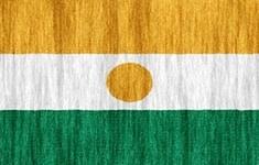 flag Niger